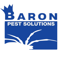 Baron Services Logo 2 NEW FINAL